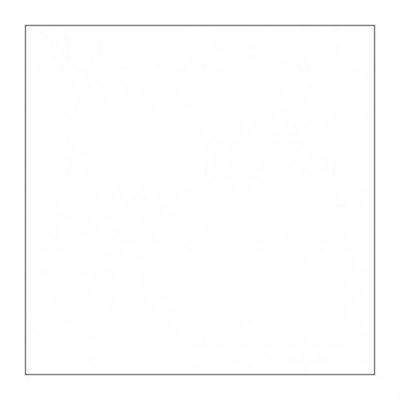 Фон FST пластиковый 60х130 белый матовый