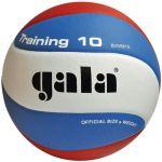 Мяч Gala волейбольный TRANING BV5561S