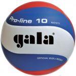 Мяч Gala волейбольный PRO-LINE BV5121S