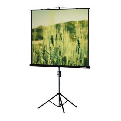 Экран Lumien Master View 180x180 MW LMV-100103