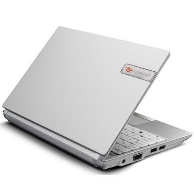 Ноутбук Packard Bell dot SE/W-001RU LU.BPR0B.010