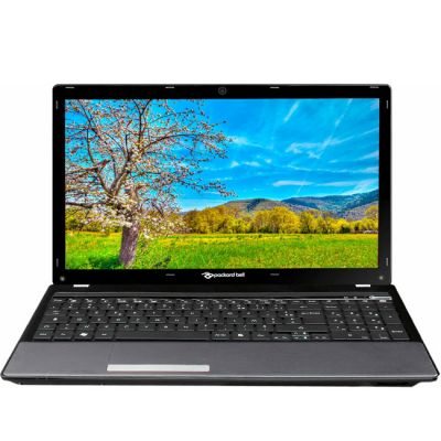 Ноутбук Packard Bell EasyNote TM85-GU-201RU LX.BL401.007