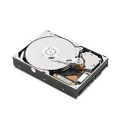 """������� ���� Lenovo ThinkCentre 3.5"""" SATA 1000Gb 45J7918"""