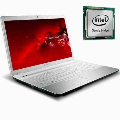 Ноутбук Packard Bell EasyNote LS44-HR-313RU LX.BVP02.003