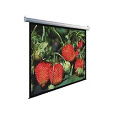 Экран Dinon Manual 240x240 MW