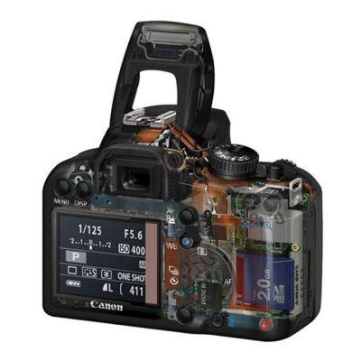 ���������� ����������� Canon eos 1000D Body (�� Canon)