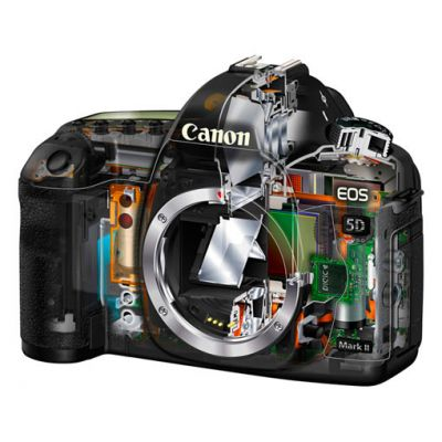 ���������� ����������� Canon eos 5D Mark II Kit ef 24-105 mm f/4,0L is usm (