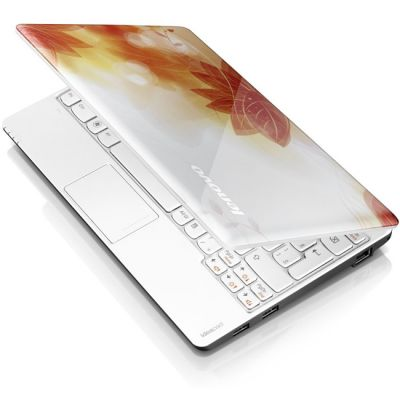 Ноутбук Lenovo IdeaPad S100 59312487 (59-312487)