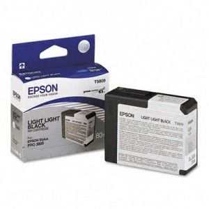 Картридж Epson Gray/Серый (C13T580900)